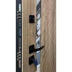 Металлическая входная дверь Regidoors Tesla +панели